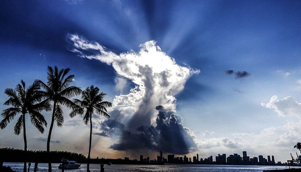 clouds over palm trees and buildings in Miami.